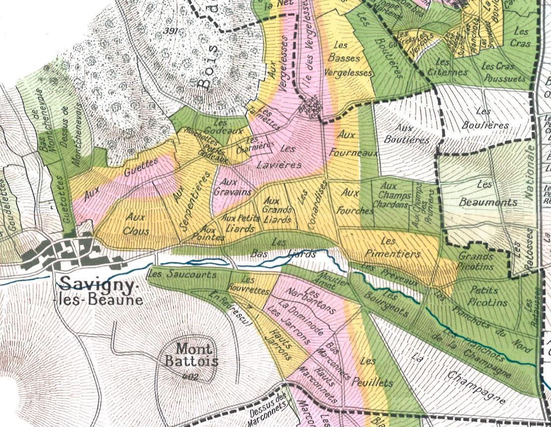 1860savigny