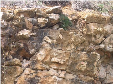 calcaire-premaux-chailles