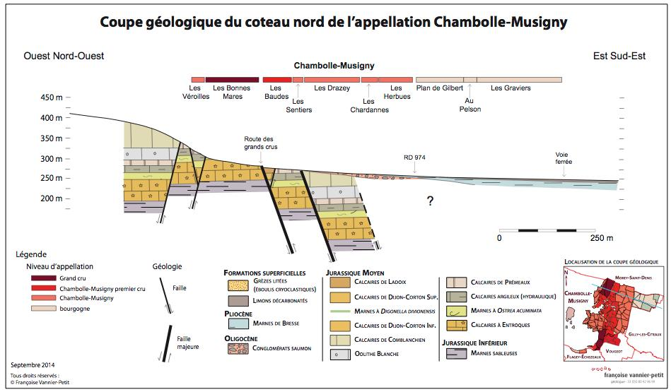 chambolle-coupe-nord