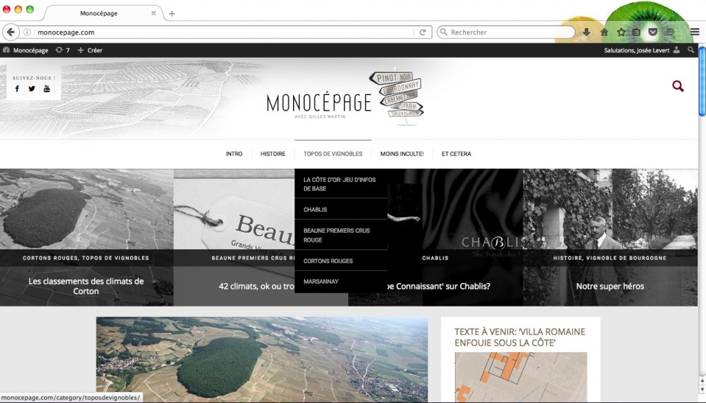 Monocepage_Rubrique