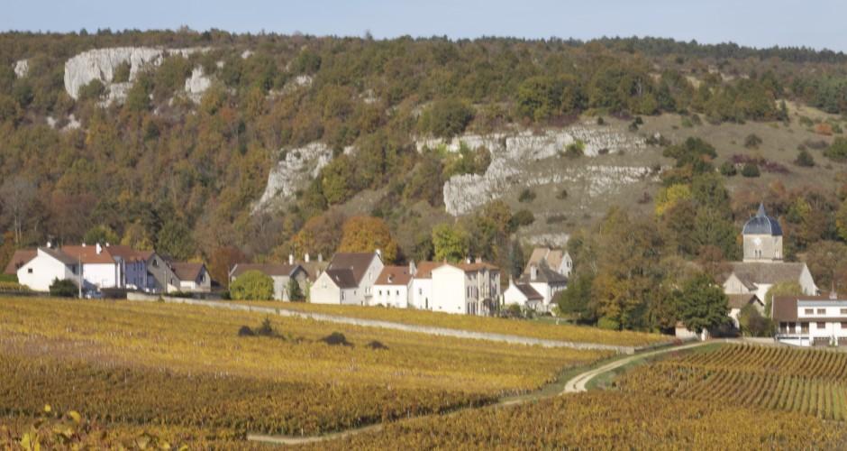 Topo de vignoble: Chambolle-Musigny